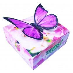 Růžový motýl L40